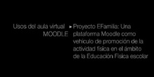 """Ponencia de D. Angel Ibaibarriaga Toset: """"Proyecto EFamilia: Una platoforma Moodle como vehículo de promoción"""