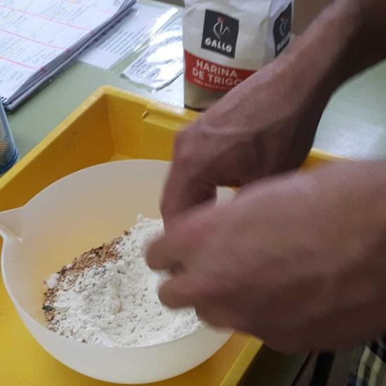 2019_01_27_4º realiza semilleros para pajaros_CEIP FDLR_Las Rozas 8