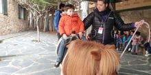 Excursión a la granja (Infantil) 31