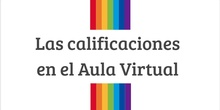 Tutorial: calificaciones en el aula virtual