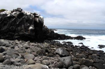 Litoral rocoso de la Isla Española, Ecuador