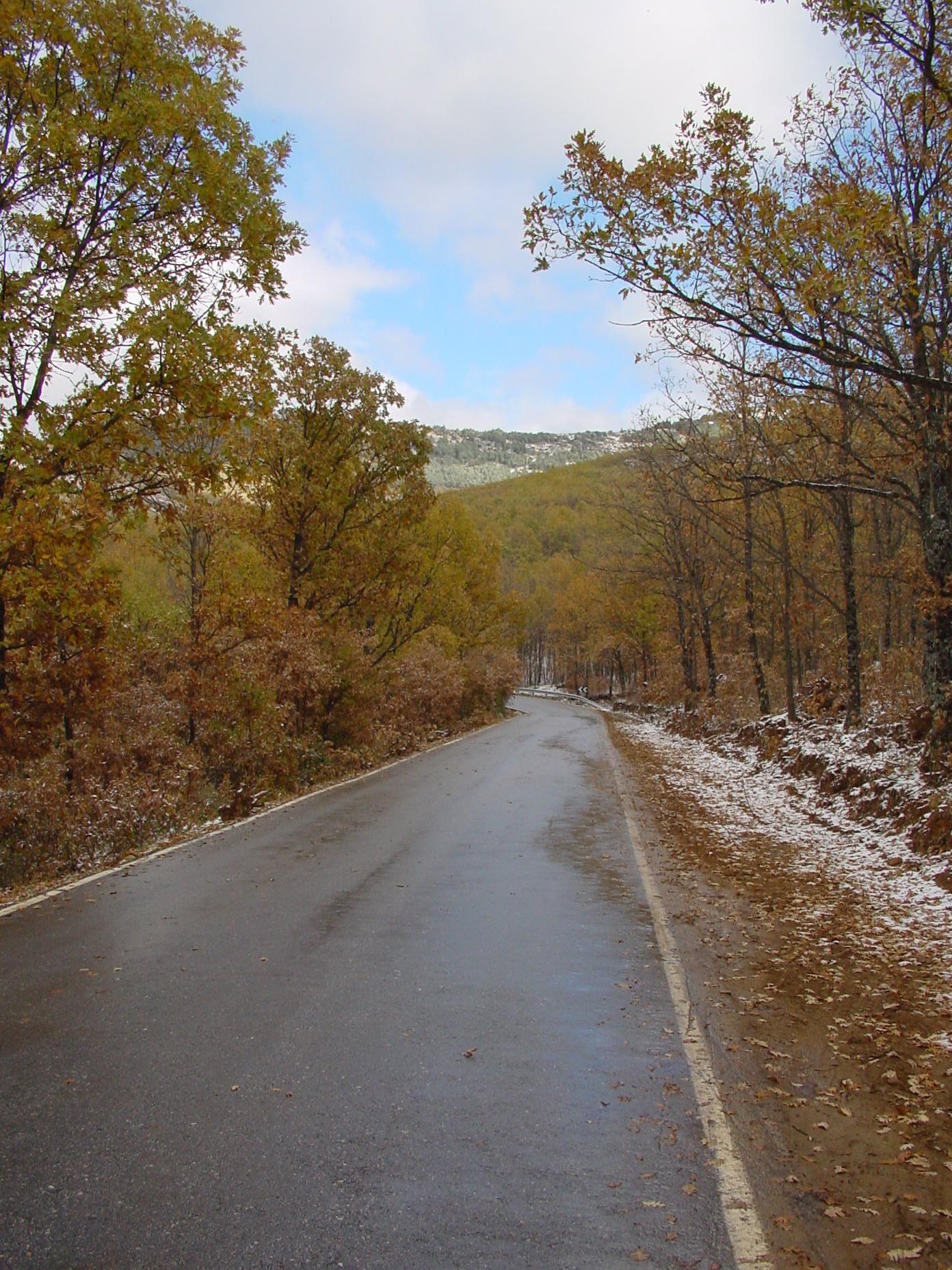 Paisaje nevado en Montejo de la Sierra