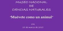 Museo Ciencias Naturales 1ºA