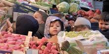 Salida al mercado
