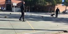 La Unidad Canina de la Policia Municipal de Las Rozas visita el cole_CEIP FDLR_Las Rozas_2017  10