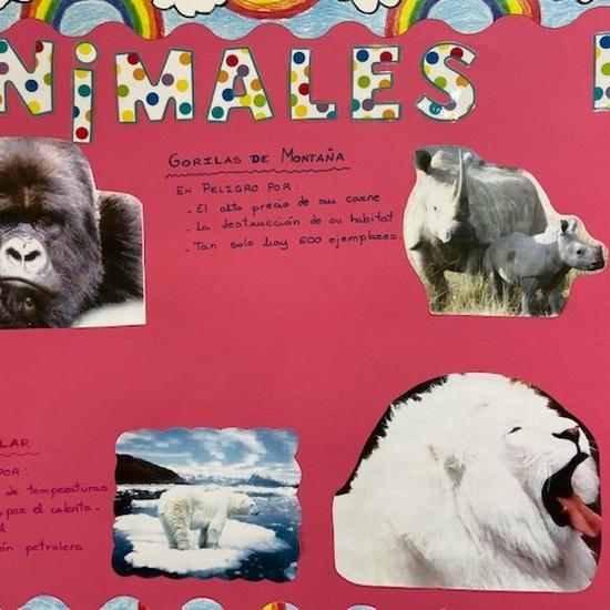 Proyecto animales en extinción 7