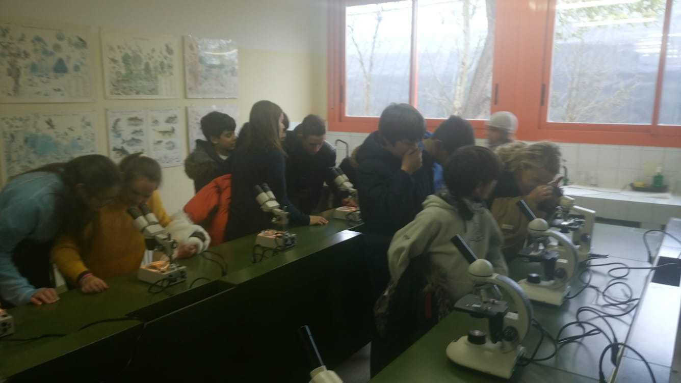 2019_03_06_Sexto visita el IES I_CEIP FDLR_Las Rozas 3