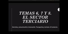 Sector terciario 1