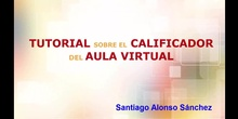 Tutorial calificador del aula virtual