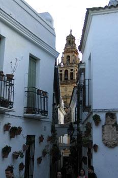 Calleja de las Flores, Córdoba, Andalucía
