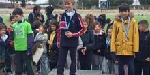 2018-04-09_Olimpiadas Escolares_CEIP FDLR_Las Rozas_Medallero 1