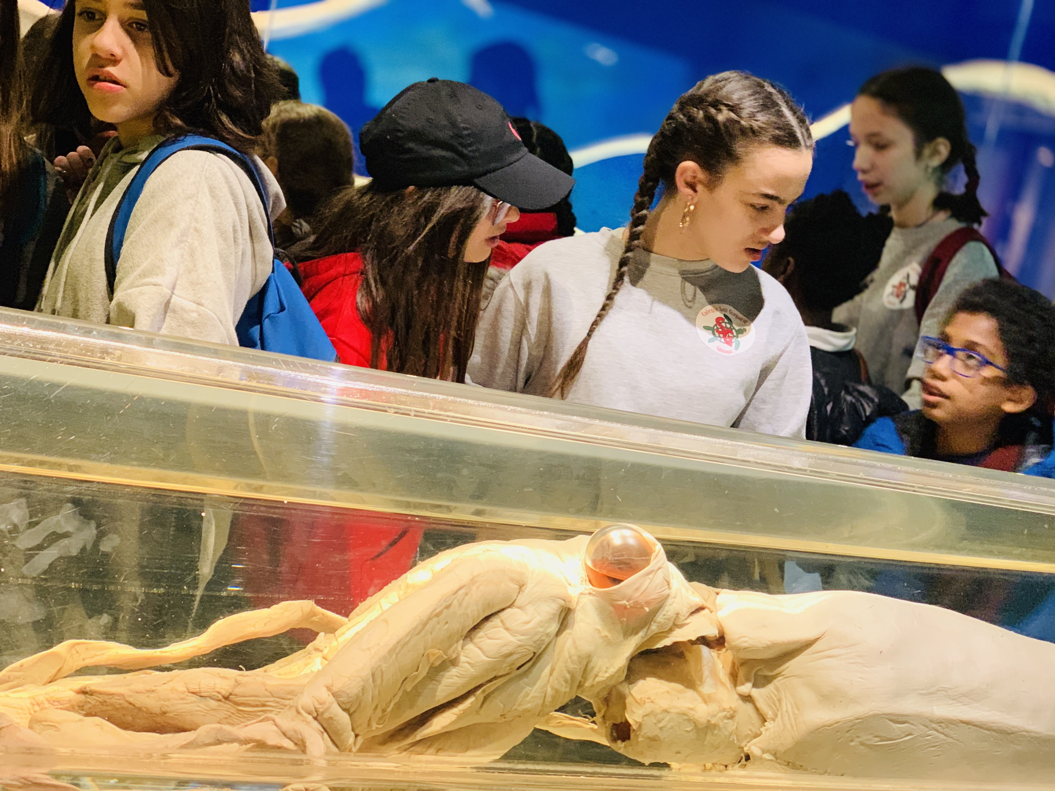 Excursión al Museo Nacional de Ciencias Naturales 2