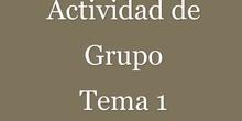 Actividad Grupal del Tema 1