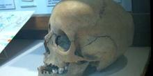 Homo sapiens sapiens (Mamíferos) Holoceno