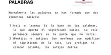 LA ESTRUCTURA DE LAS PALABRAS