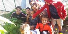 """2019_10_09_Cuarto """"estrena"""" el huerto_CEIP FDLR_Las Rozas 2"""