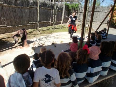 2017_04_04_Infantil 4 años en Arqueopinto 1 30
