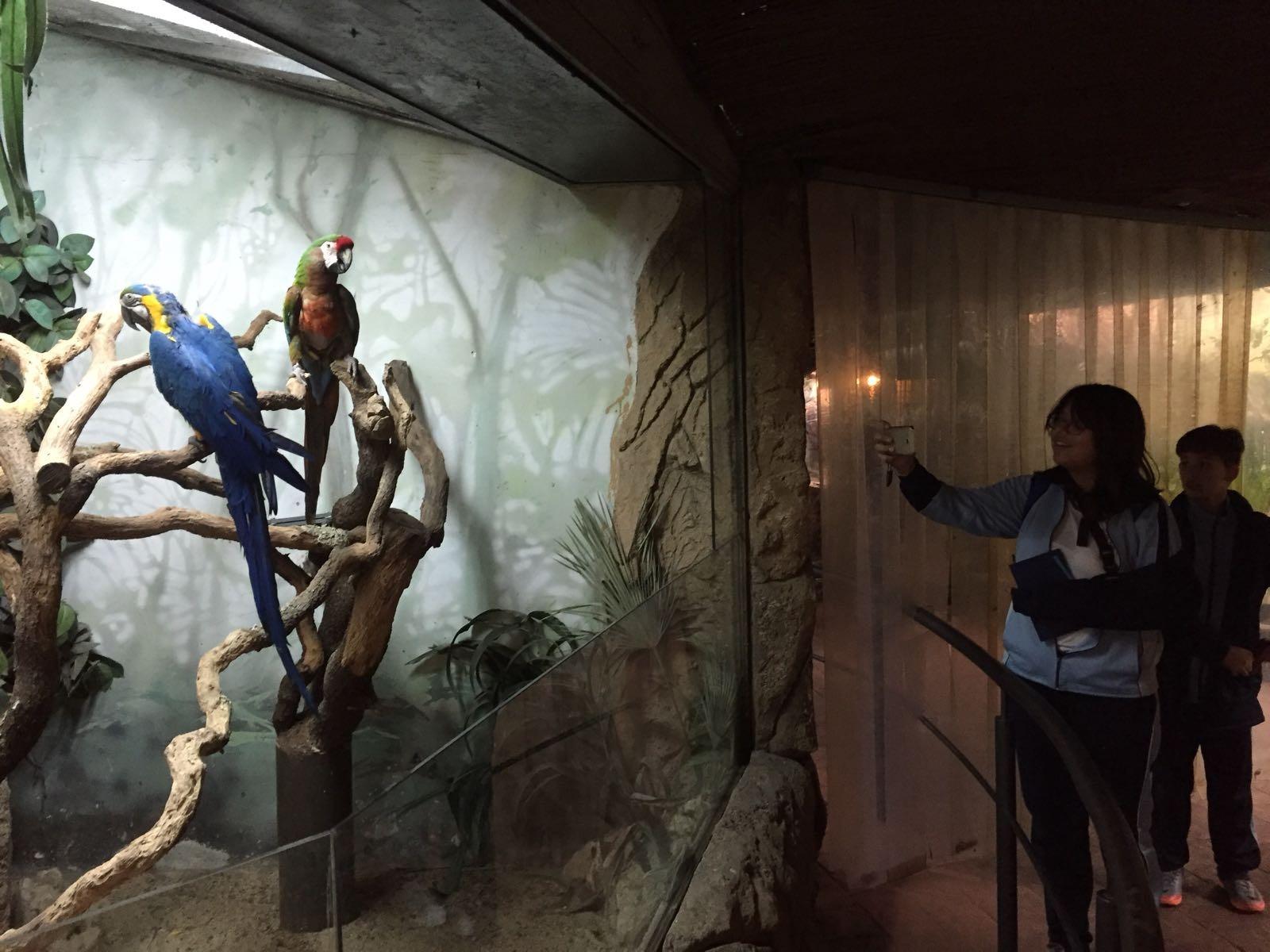 Faunia: taller y visita guiada 18