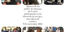 2016-11-09_DISECCION OJO CORDERO (47)