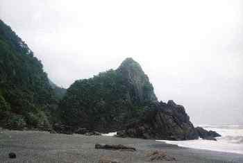 Bosque tropical y playa en el parque nacional Abel Tasman, Nueva