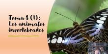 Tema 8 (I) Animales: Los animales invertebrados (I)