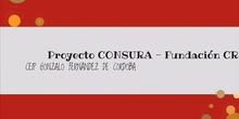 CONSURA PROYECTO CREATE 2020