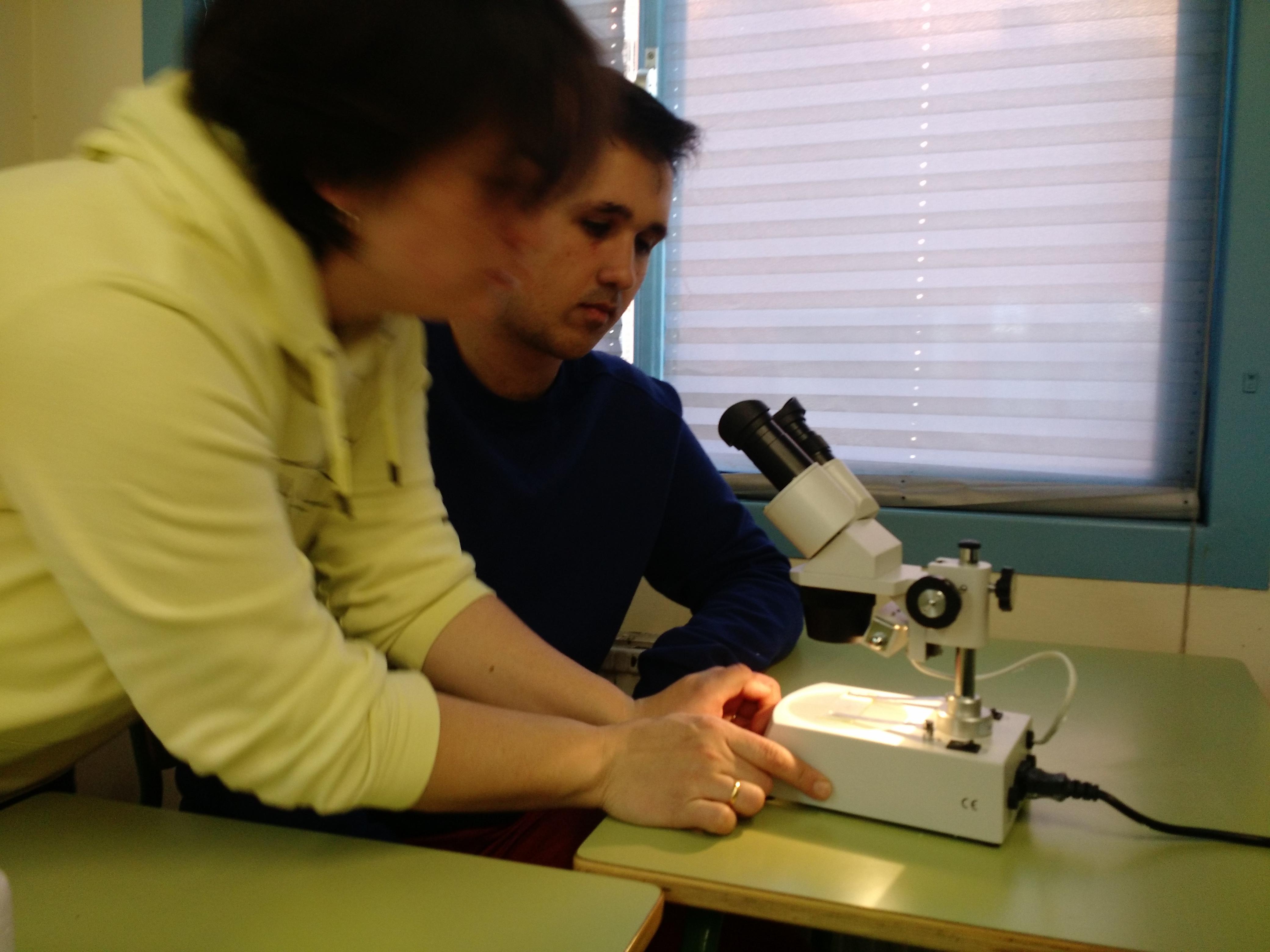 Usando el microscopio 7
