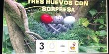 """Cuento """"Tres huevos con sorpresa"""""""