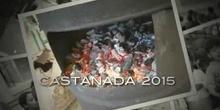 CASTAÑADA 2015