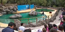 Visita al zoo 2019 15