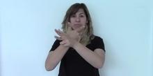 VIDEOCHAT (Signos EducaSAAC)