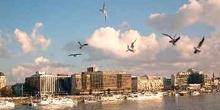 Gaviotas en el cielo de Budapest, Hungría