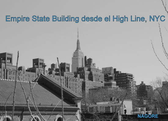 Empire State desde Highline