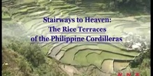 Stairways to Heaven: The Rice Terraces of the Philippine Cordilleras: UNESCO Culture Sector