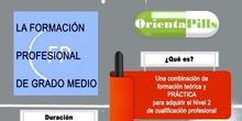 Infografía FP GRADO MEDIO ORIENTAPILLS