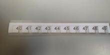 mas rectas numéricas 6