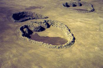 Huellas de dinosaurios extraídas de la costa asturiana, Museo de